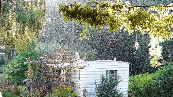 14.08. Regen und Sonnen parallel