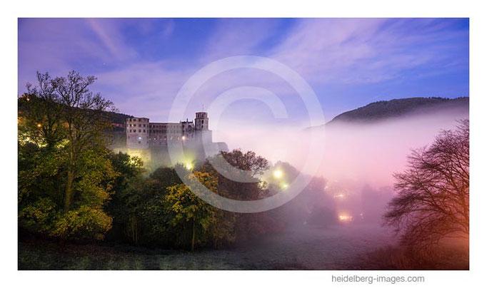 Archiv-Nr. hc2017161 / Heidelberger Schloss