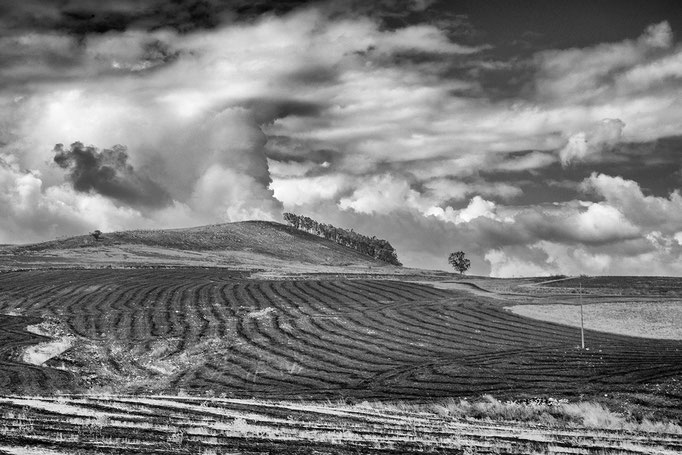 Sicily,