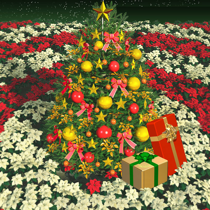 クリスマスツリーとポインセチア