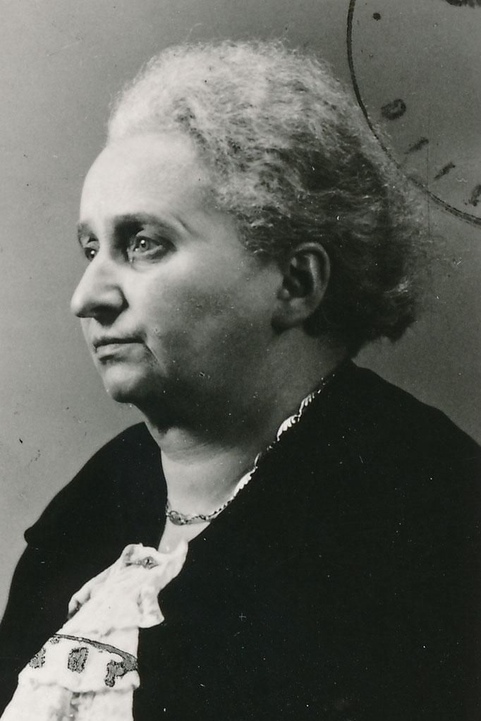 Schnurmann Rosa