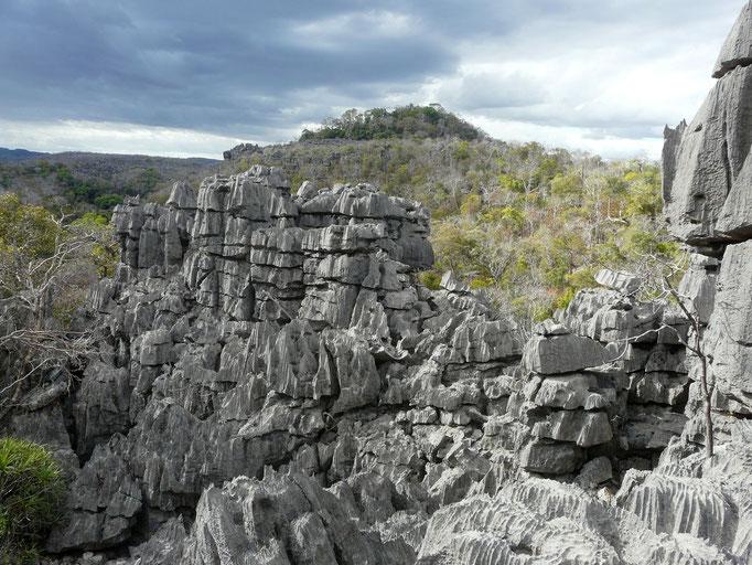 Madagaskar, Tsingy (Kalksteinfelsen)