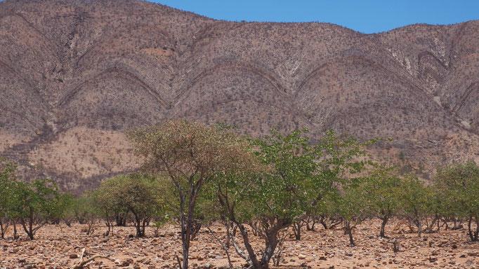 Namibia, geologische Formationen nahe Seisfontein
