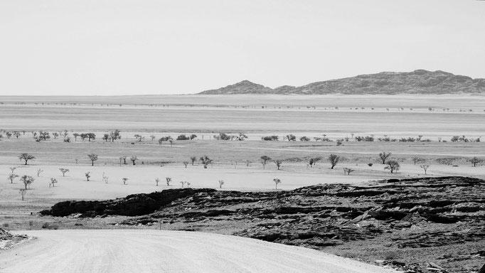 weite Ebene, Namibia
