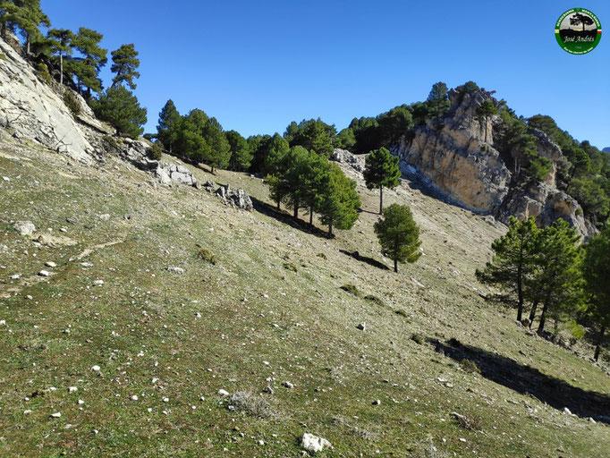 Collado del Calarejo de Los Villares