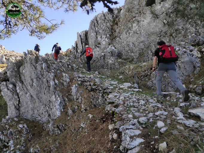 Vieja senda de subida a la caseta del Calarejo de Los Villares