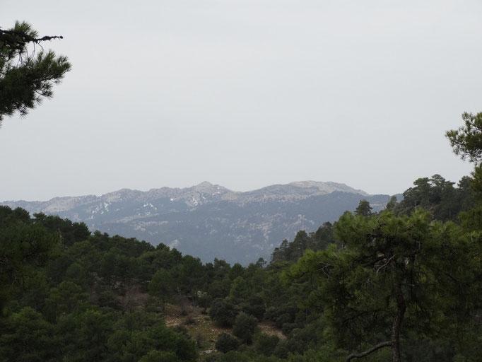 Zona del Gilillo y Castellones