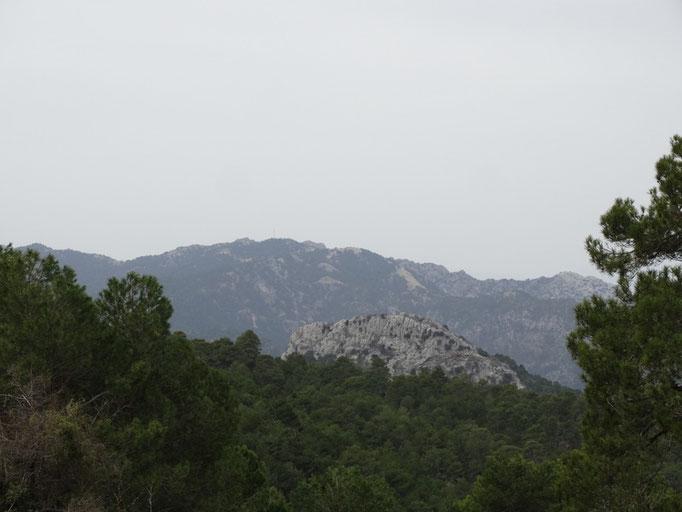 Zona de Peña Gallinera