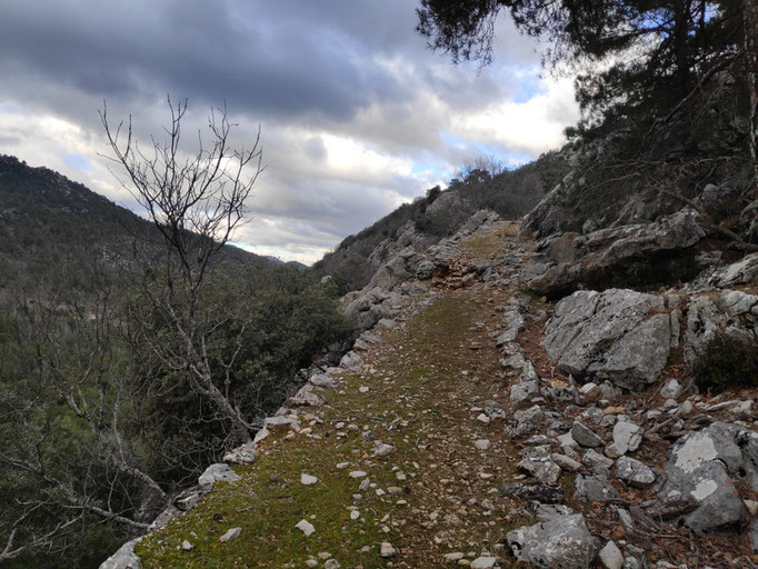 Camino de herradura por Navahondona