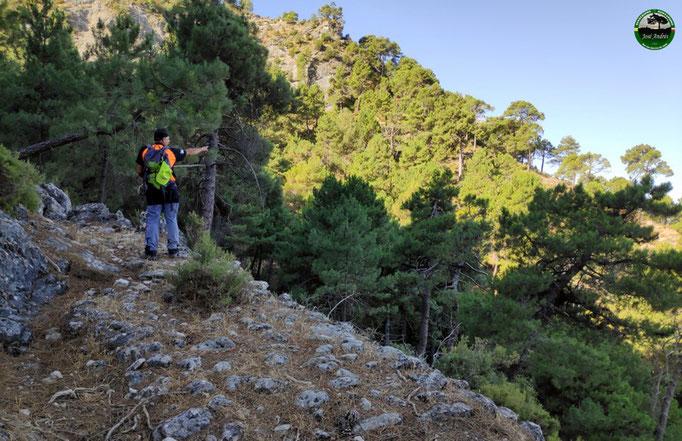 Viejo camino de los Clavelones o Nogueruela