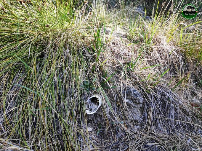 Fuente de las Tablas, según Alpina (No es la que está junto al cortijo o casa de las Tablas)