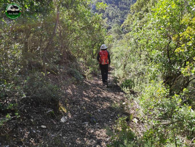 Sendero de bajada al Aguarrocí, desde el collado del cerro de La Bandera
