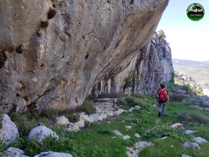 Cordel del Castellar. Vía Pecuaria.