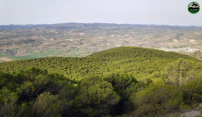 Vistas a la zona y valle de Padul