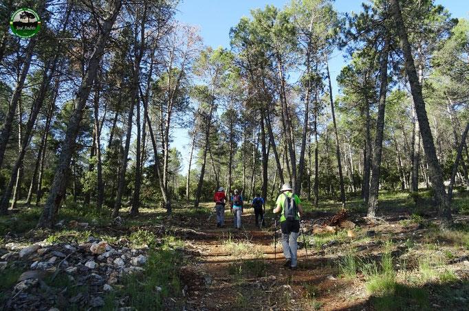 Hacia el cerro de los Villares