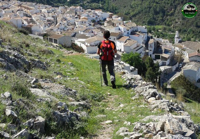 Cordel del Castellar. Vía Pecuaria. Llegando a Torres.