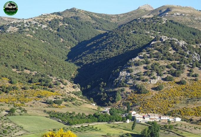 Barranco de los cañuelos y aldea.