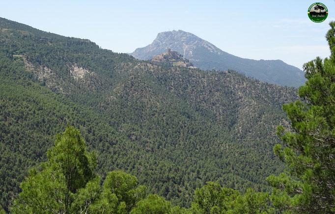 Por la senda que hay en la ladera del cerro de los Villares