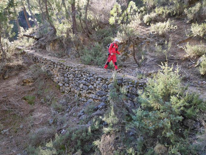 Viejo camino de herradura que va al Puente de las Herrerías