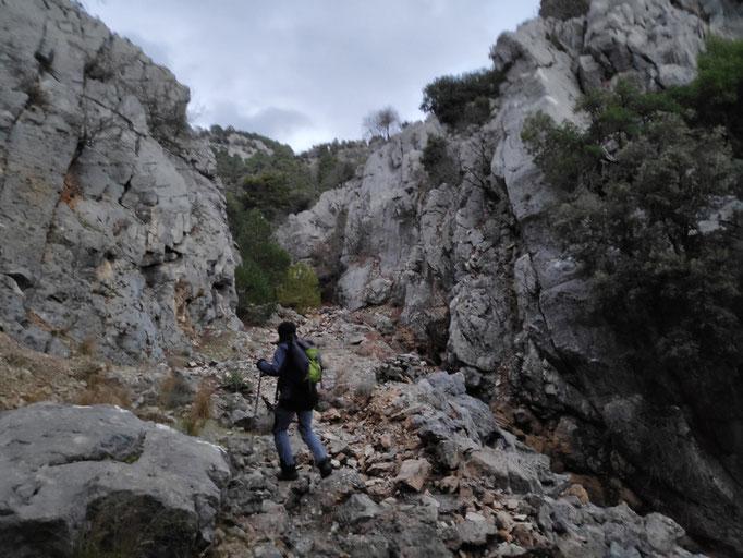 Cerrada arroyo de la Rejadilla o Tío Zarzales