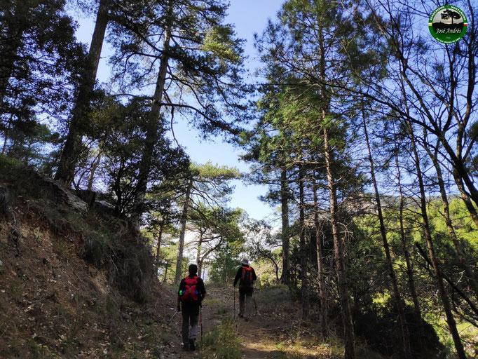 Camino que nos lleva por la falda del cerro Pedregoso