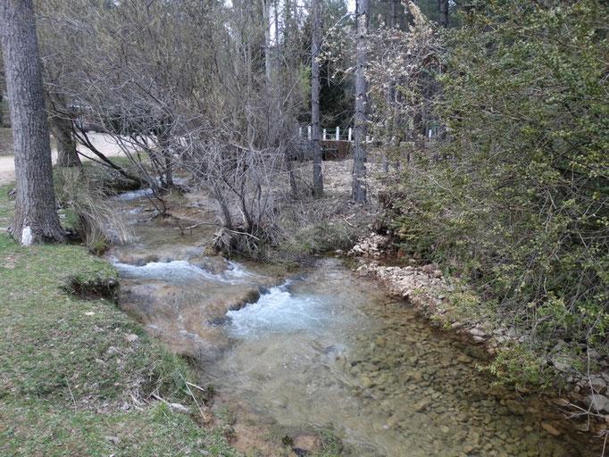 Arroyo de Linarejos