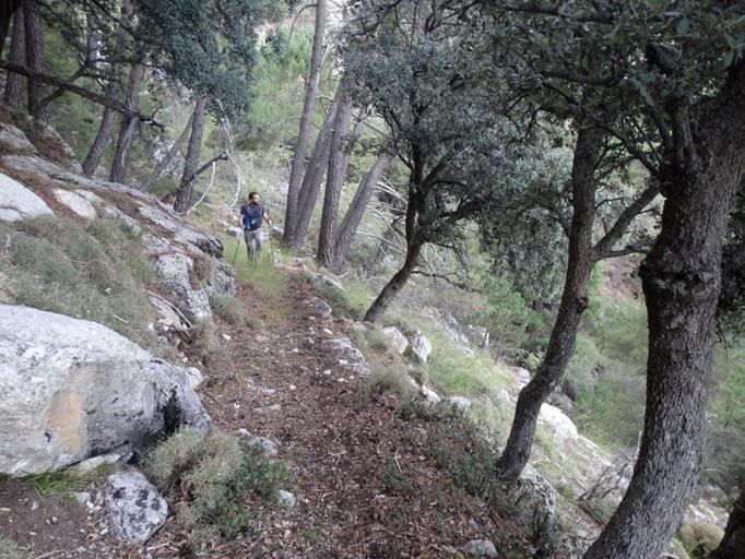 Viejo camino que va desde la casa forestal del Chorro al collado de Cagahierro