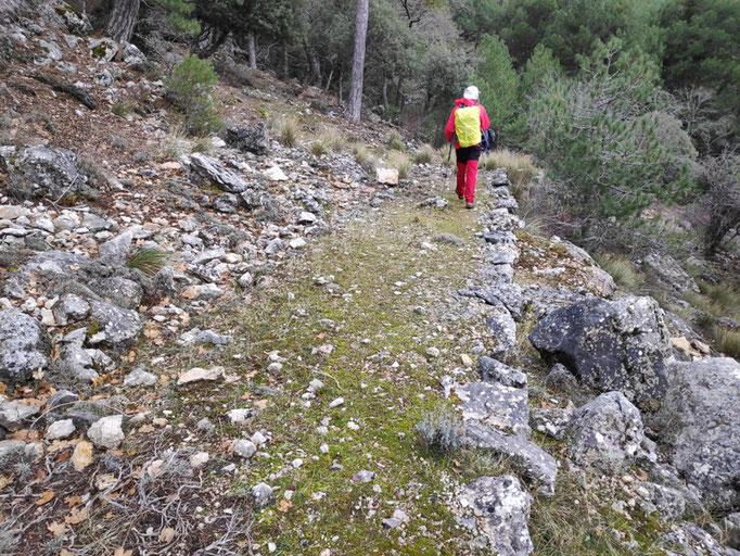 Camino de herradura, hacia la cañada de las Fuentes