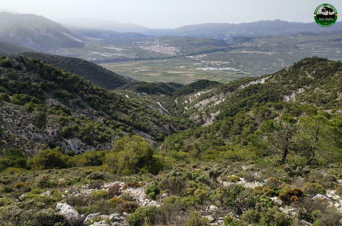 Vistas al valle de Padul, Marchena...