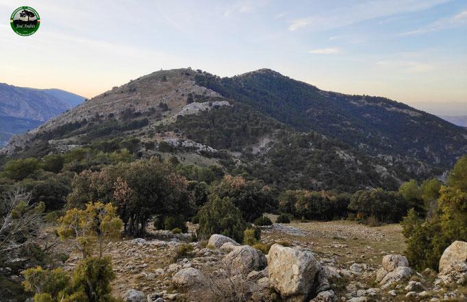 Cerro del Madroñal y Carboneras