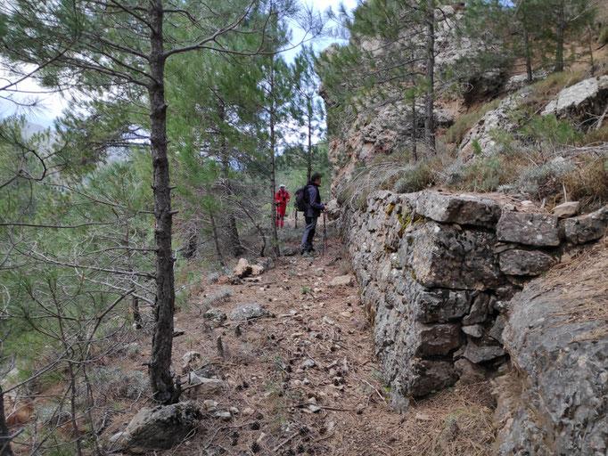 Camino de herradura del cerro de las Museras