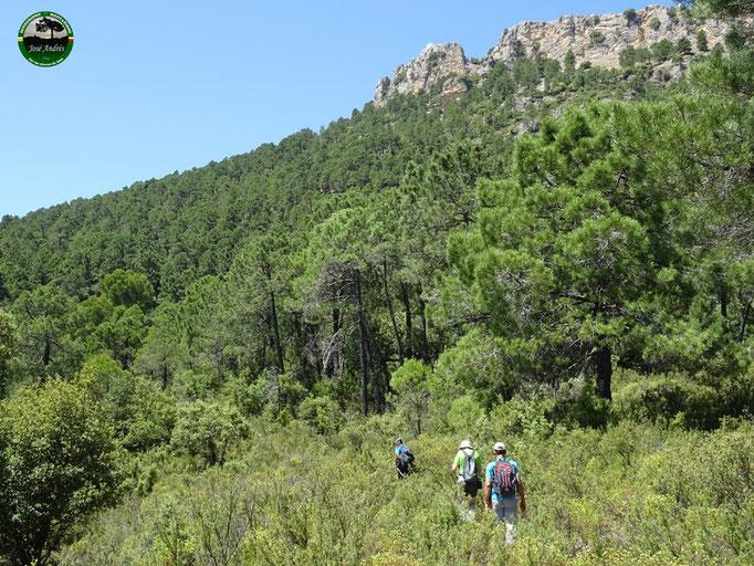 Por la senda que hay debajo de Peñalta, dirección cerro de los Villares
