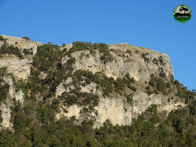 V.G. del cerro del Espino