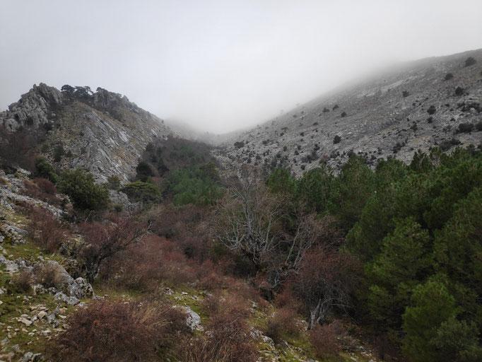 Barranco de la Cañada de las Fuentes