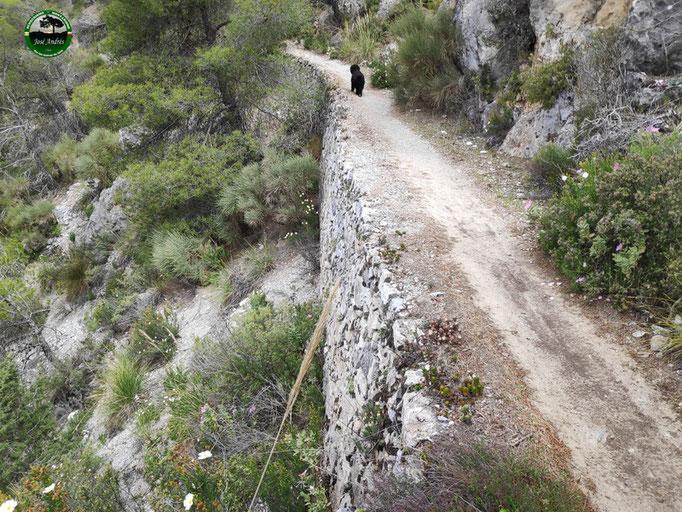 Hermosos senderos de mampostería durante la bajada por el barranco de las Covazuelas