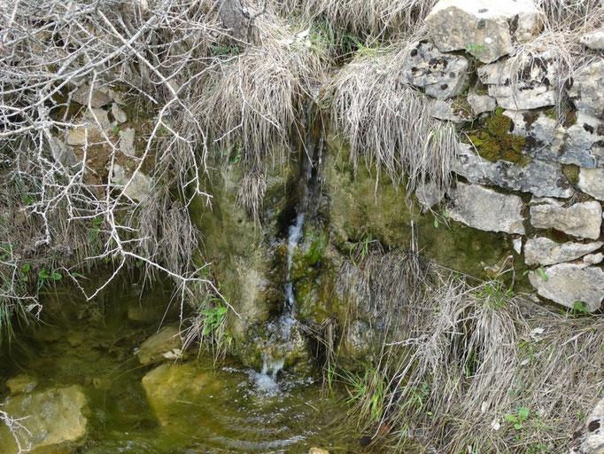 Fuente de Cañada de Enmedio