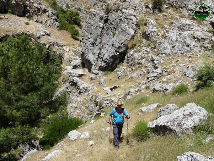 Paso junto al arroyo y barranco de El Cerezo