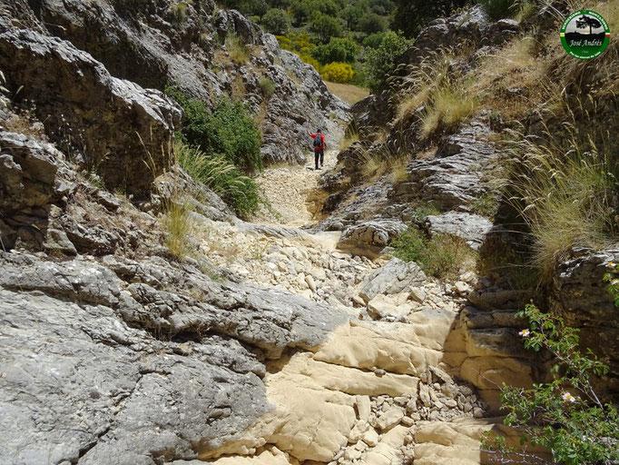 Arroyo de El Cerezo