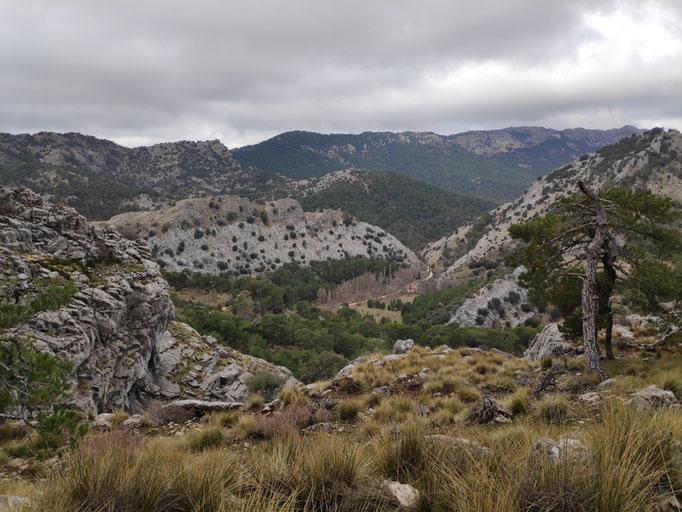 Cañada de las Fuentes