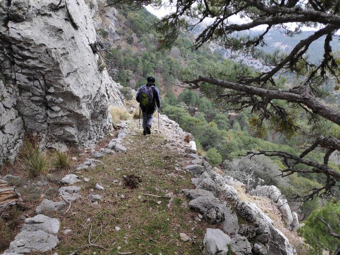 Viejo camino de herradura por el barranco de la Luz