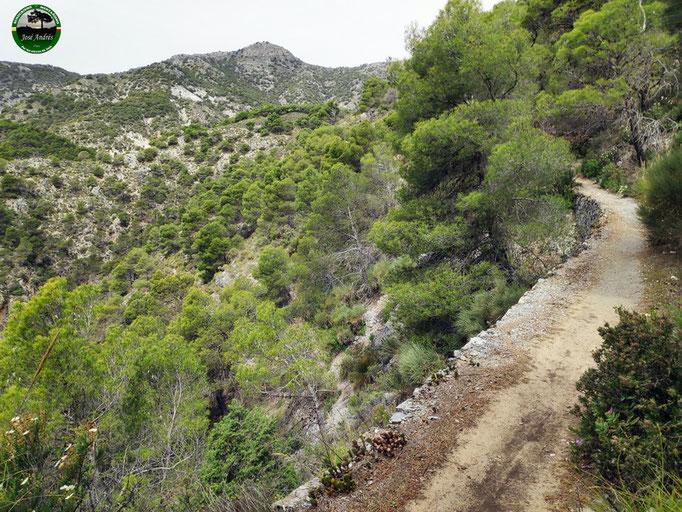 Hermosos senderos de mampostería durante la bajada por el barranco de las Covazuelas. Senda Perros Muertos