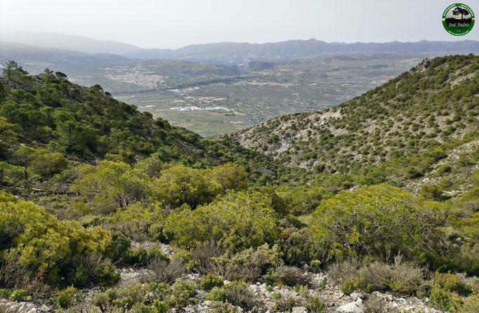 Vistas al valle de Marchena, Padul...