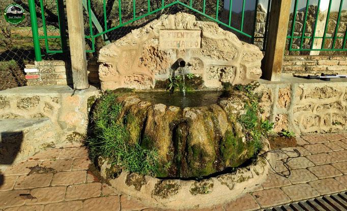 Fuente Puchardo. Loma de María Ángela