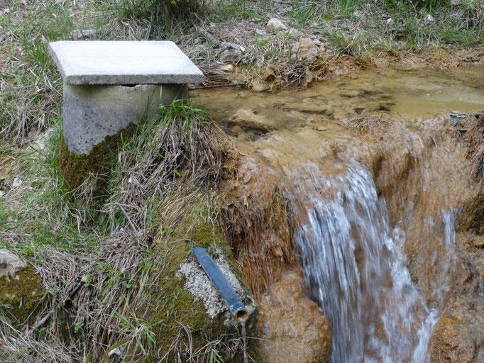 Fuente del arroyo del collado Verde
