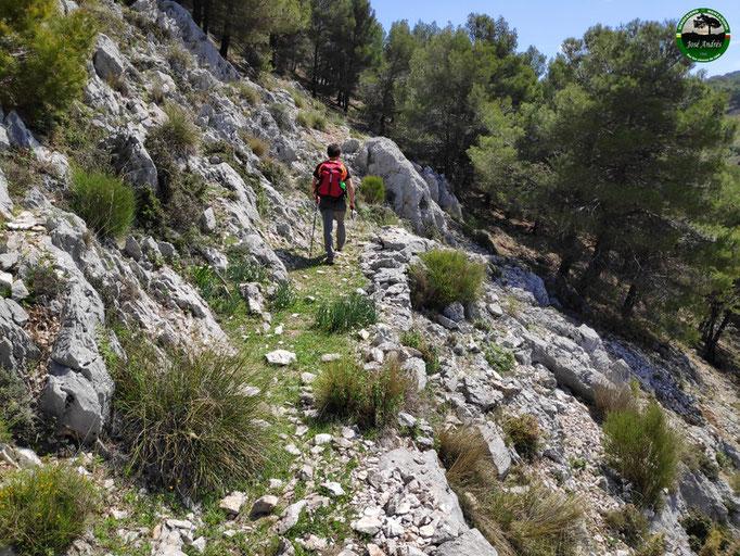 Vieja senda del cerro de la Vieja.