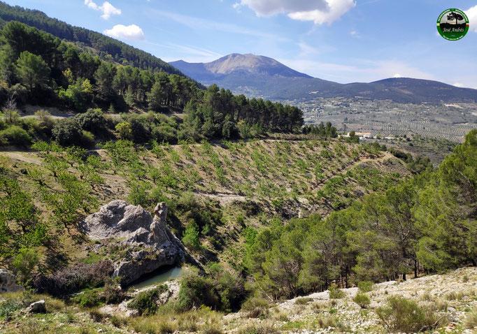 Vistas desde la vieja senda del cerro de la Vieja.