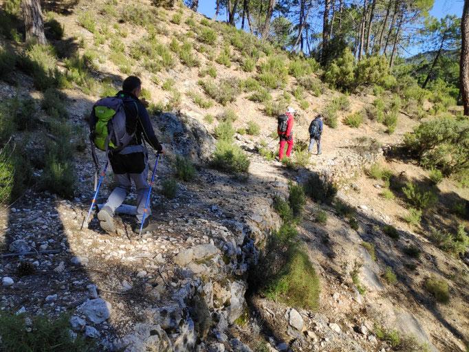Camino de herradura, hacia el Puente de las Herrerías