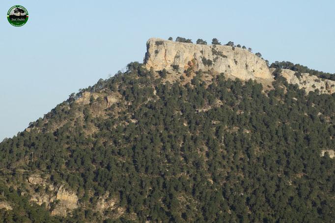 Cerro Bucentaina