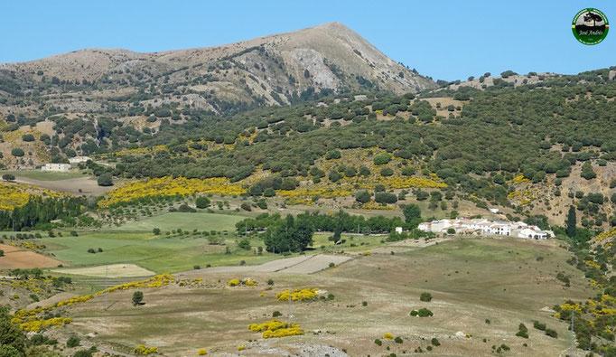Valle de Los cañuelos y El Cerezo
