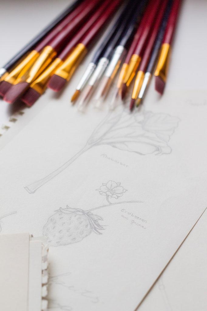Bild: meine Zeichnung, Original: Natur